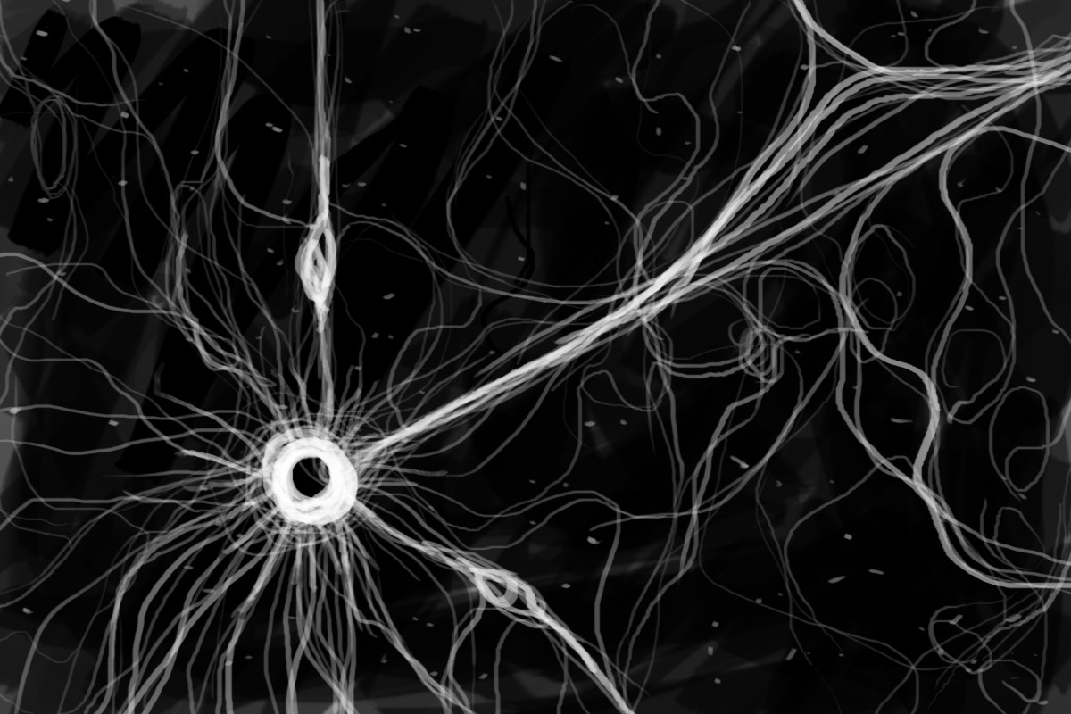 Drawing of neurons, original image at http://www.cumc.columbia.edu/dept/gsas/biochem//research/mn_index.html